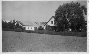 Børsbakkegård, Næsbyvej 3, 1950
