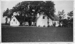Salviggård, Næsbyvej 23, 1950