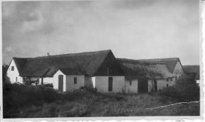 Søgården, Enghavegårdsvej 2, 1950