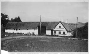 Svalegården, Næsbyvej 32, 1950
